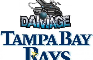 tampabaydamagelogo